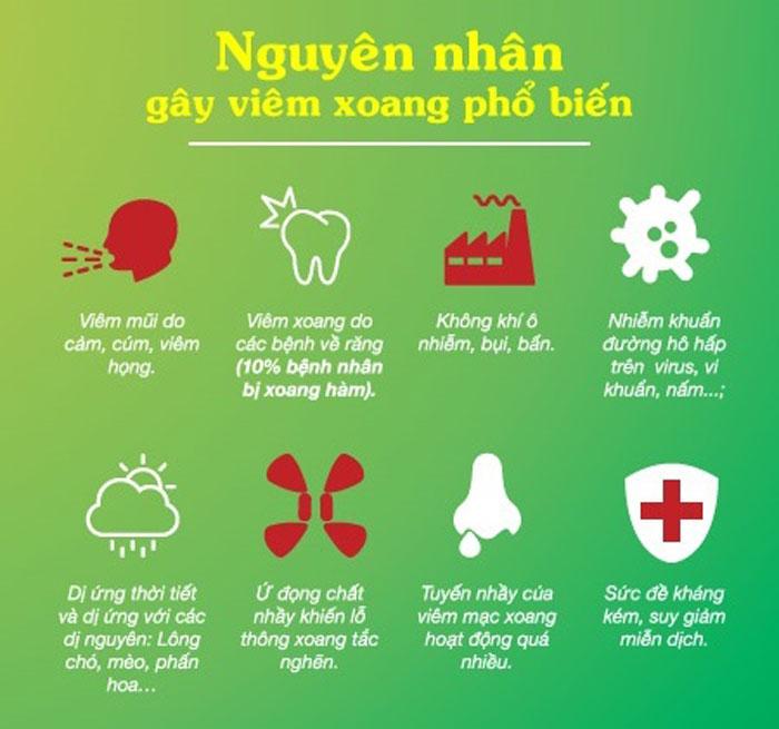nguyen-nhan-gay-benh-viem-xoang