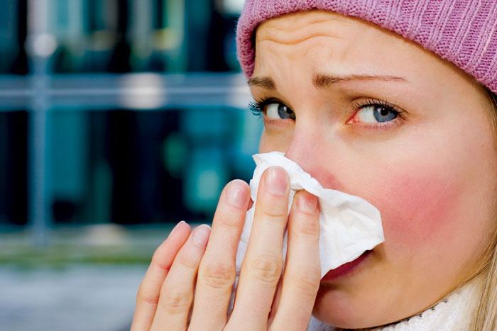 Bài thuốc chữa viêm xoang bằng lá lốt hiệu quả trong 10 ngày