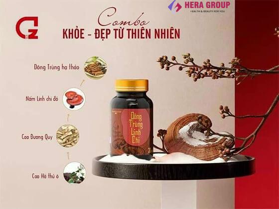 Thành phần viên uống đông trùng linh chi-thaoduockhoe.com