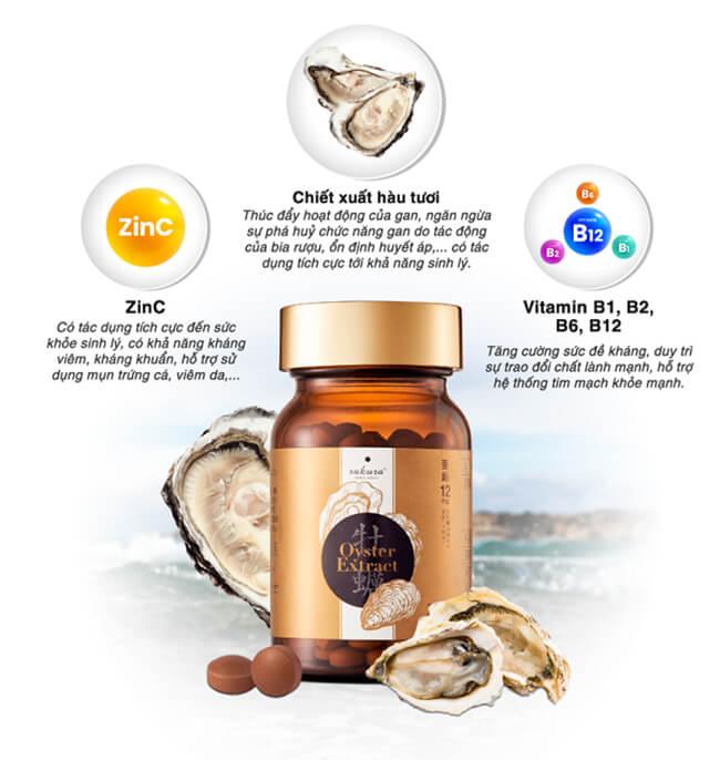 thành phần viên uống hàu tăng cường sức khỏe sakura oyster extract-thaoduockhoe.com