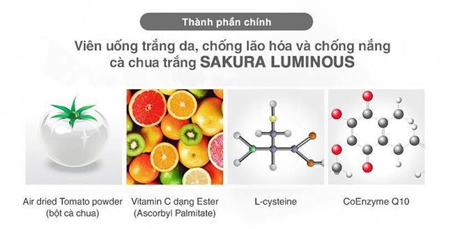thành phần viên uống trắng da cà chua sakura luminous-thaoduockhoe.com